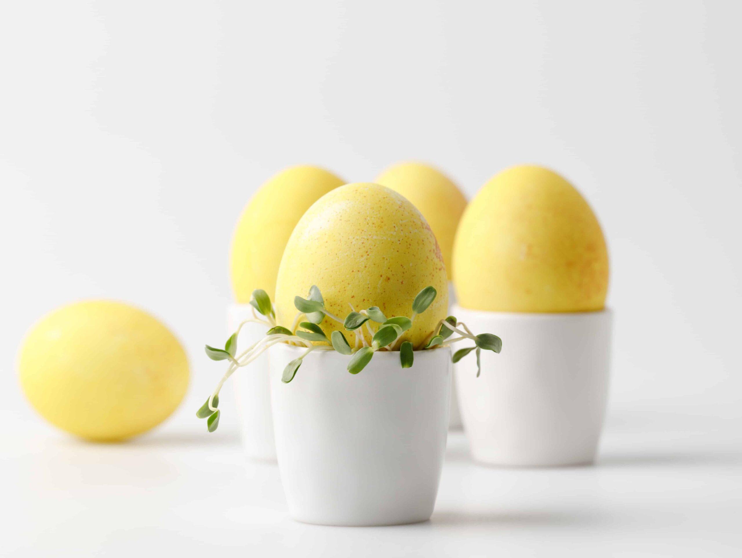 Ostereier färben gelbe Eier weiße Eier färben