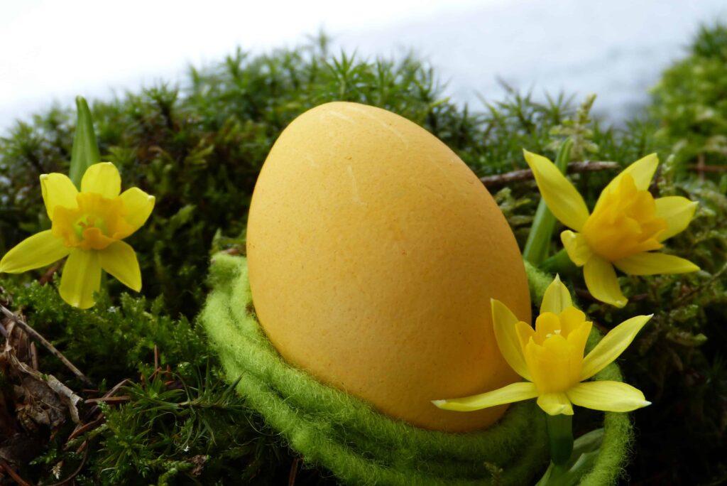 Frohe Ostern Eier Curcuma färben