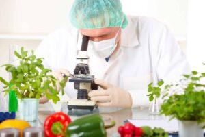 Kontrolle kein GMO pfanzlich vegan ohne Belastung unabhängige Kontrolle Prüfung