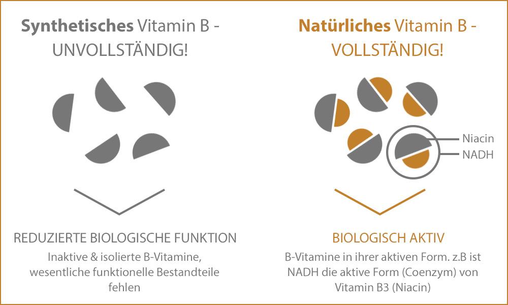 Vitamin B: synthetisch vs. natürlich