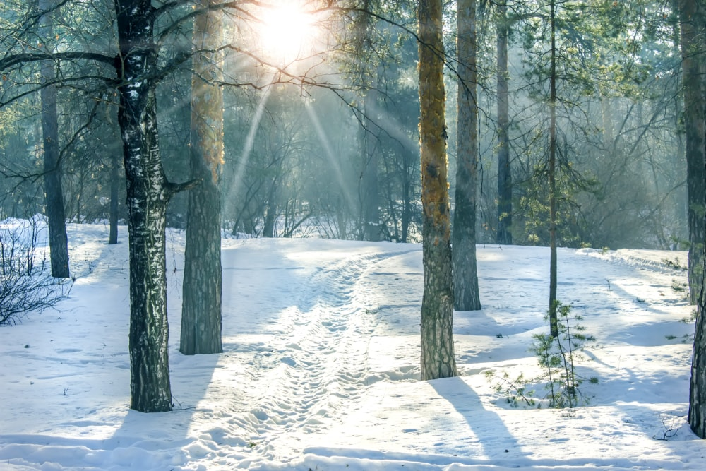 Winterdepression - Tipps. Sonnenstrahlen, Vitamin D
