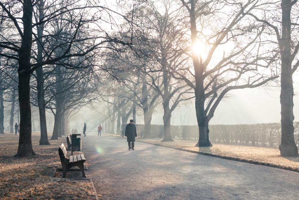 Winterdepression - Tipps. Spaziergang, Sonne, Vitamin D
