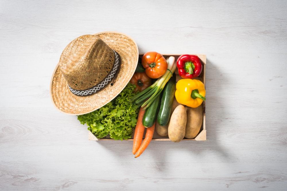 Bio Produkte und Bio Qualität