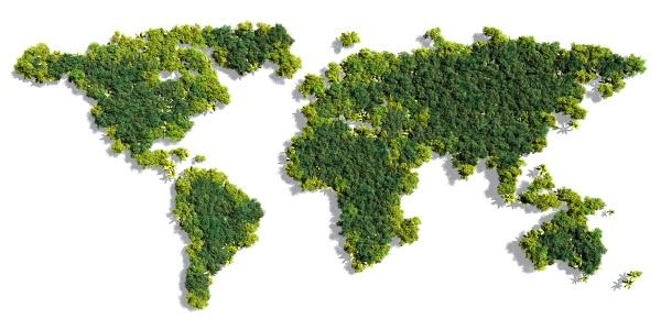 GoGreen - grüne Welt