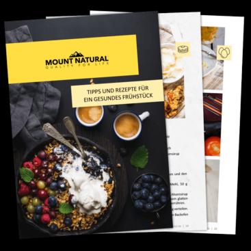 Gesundes Frühstück E-Book