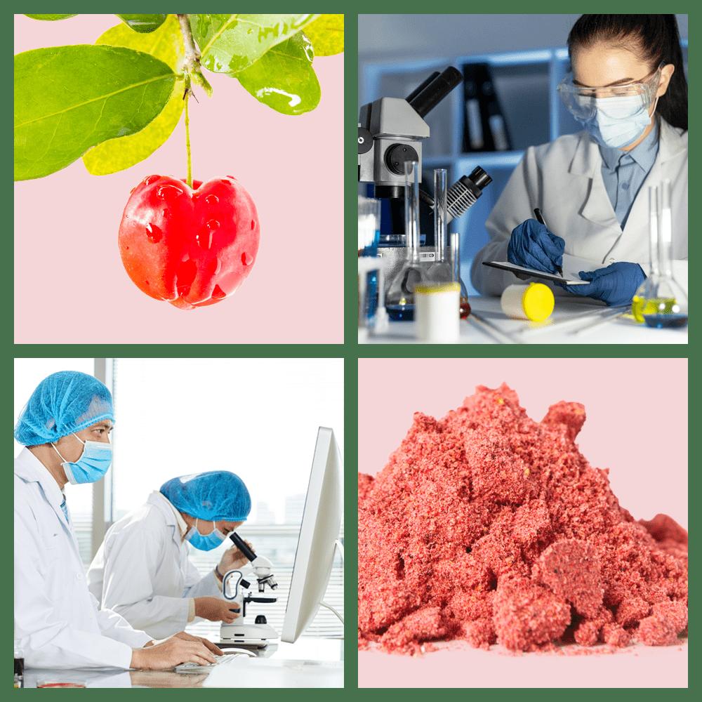Mount Natural Premium Vitamin C - Collage