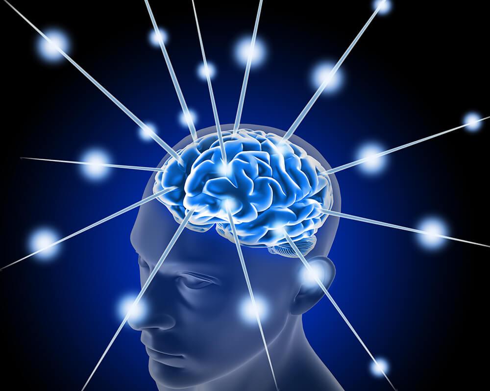 Auwirkung von Omega-3 auf das Gehirn