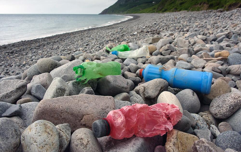 Plastikmüll am Ufer